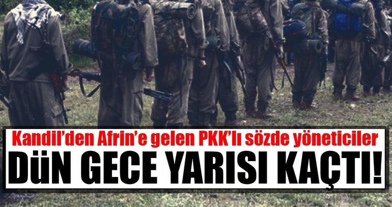 Son Dakika Haberi: En korkağı Kandil'den gelen üst düzey PKK militanları çıktı