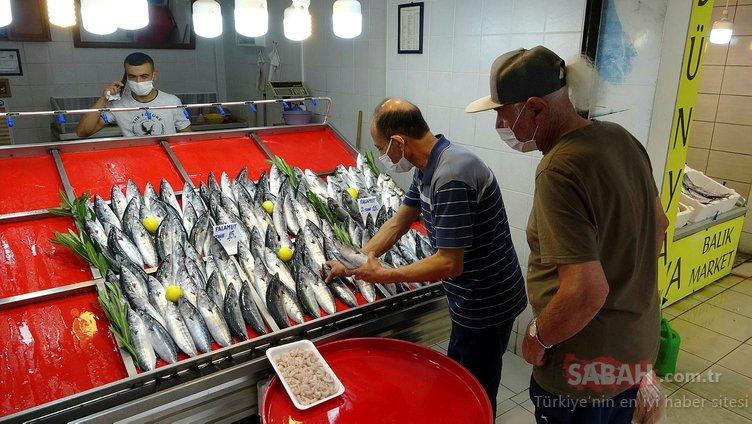 Tezgahlarda bolluk yaşanıyor! Balık fiyatları ne kadar?