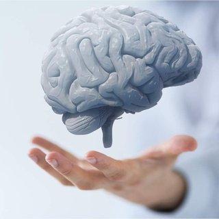 Bu besin beyin hücrelerini yeniliyor!