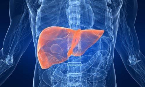 Karaciğerinizde o probleme neden oluyor!