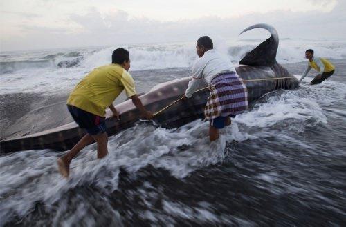 Dünyadan günün fotoğrafları (3 Ağustos 2012)