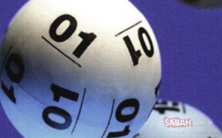 25 Temmuz Sayısal Loto sonuçları kazanan numaraları belli oldu! Milli Piyango Sayısal Loto sonuçları MPİ bilet sorgulama sayfası