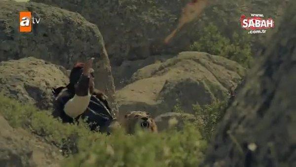 Bozkır Arslanı Celaleddin'in ilk tanıtımı