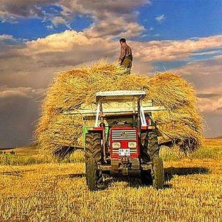 Çiftçiye 17 milyar TL'lik üretim desteği verilecek