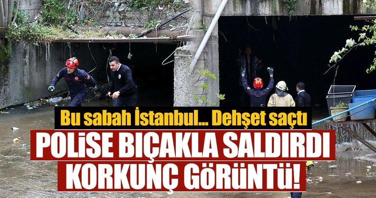 Son dakika: İstanbulda sinir krizi geçiren Suriyeli kadın, polise zor anlar yaşattı
