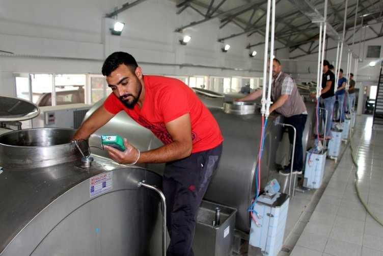 Diş hekimliğinden süt işletmeciliğine uzanan yolculuk