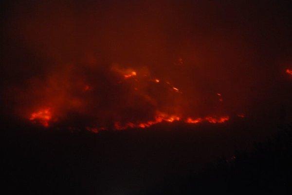 İskenderun'da orman yangını