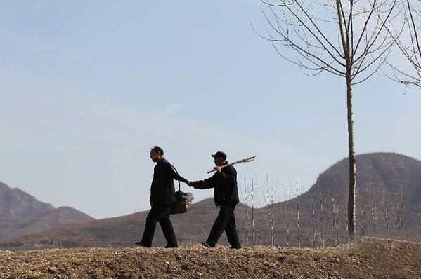 İki kahraman 10.000 ağaç dikti