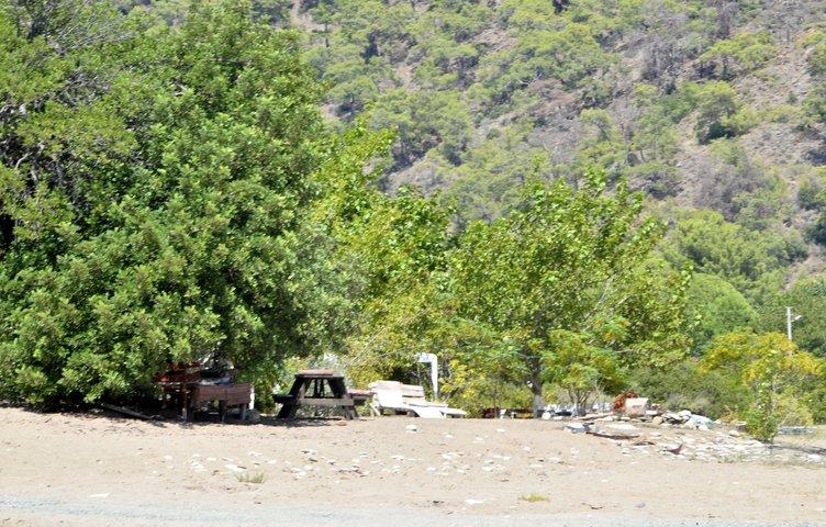 Korsan çadırcılar Likya kum zambağını bitirdi