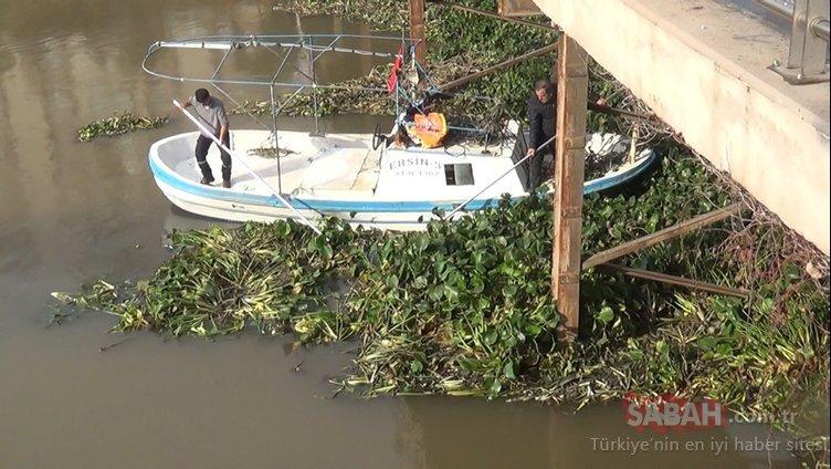 Asi Nehri, ölümcül tehlikeden temizleniyor