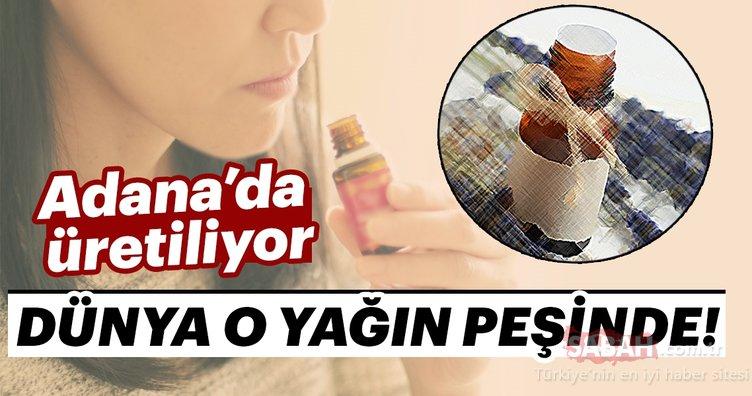 Adana'da üretiliyor! Dünya o yağın peşinde...