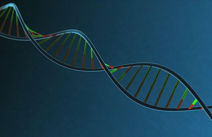 İNSAN DNA'SININ MÜZİĞİ NOTALARA DÖKÜLDÜ
