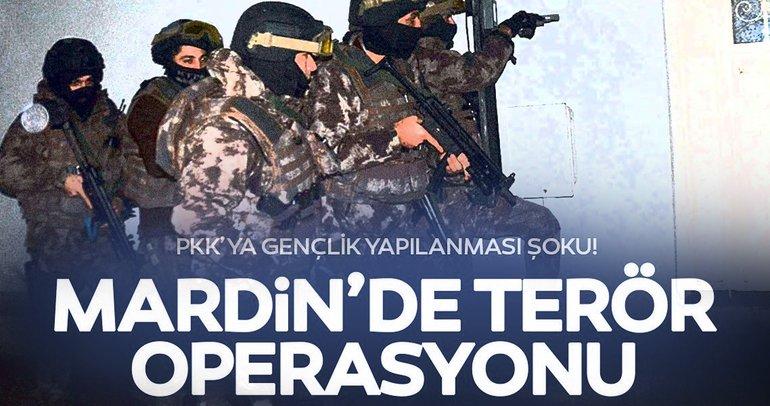 Mardin'de terör operasyonu: 11 gözaltı
