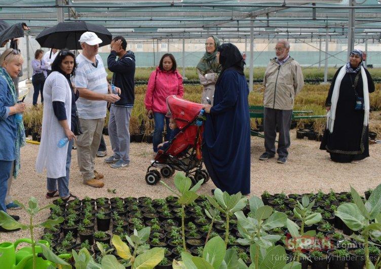 O ülkede Kur'an Botanik Bahçesi kuruldu