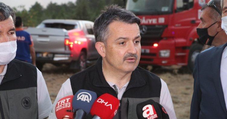 Bakan Pakdemirli'den yangın açıklaması