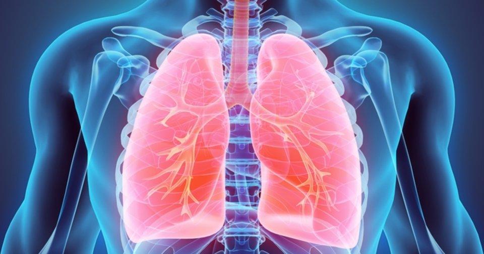Akciğere ne iyi gelir? Akciğere iyi gelen besinler, bitkisel çözümler  nelerdir? - Sağlık Haberleri