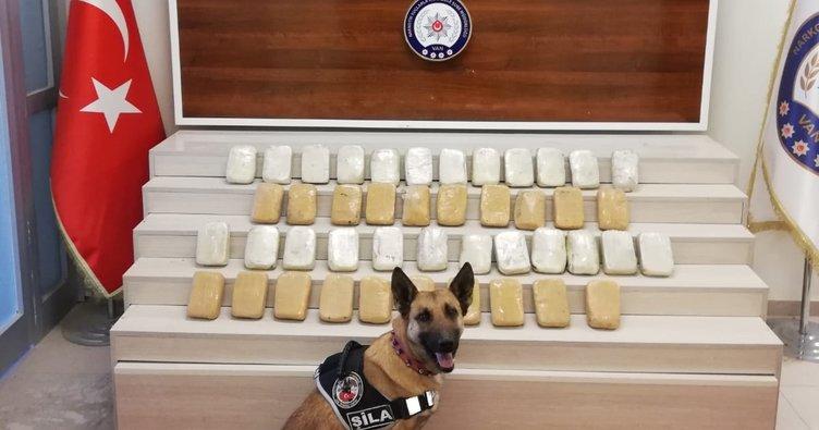 Narkotik köpeği Şila 23 kilo eroin yakalattı!