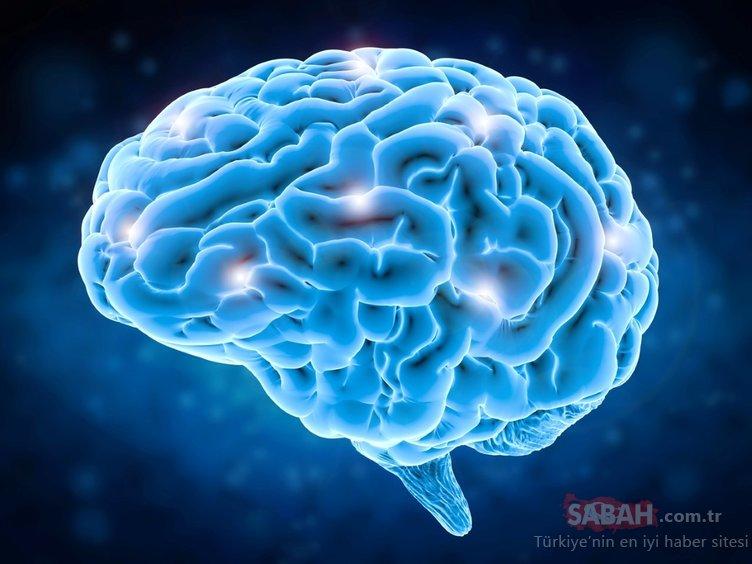 Dikkat! Beynin üretkenliğini arttırıyor!
