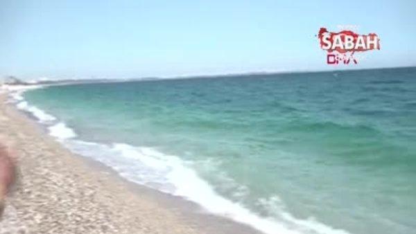 Balon balığı alımları bayramdan sonra başlıyor | Video