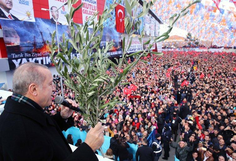 Cumhurbaşkanı Erdoğan, elinde Zeytin Dalı ile konuştu