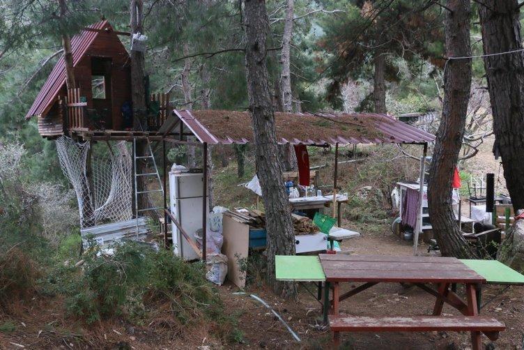 Koronavirüs önlemi için ormanda yaptıkları ağaç evde kalıyorlar