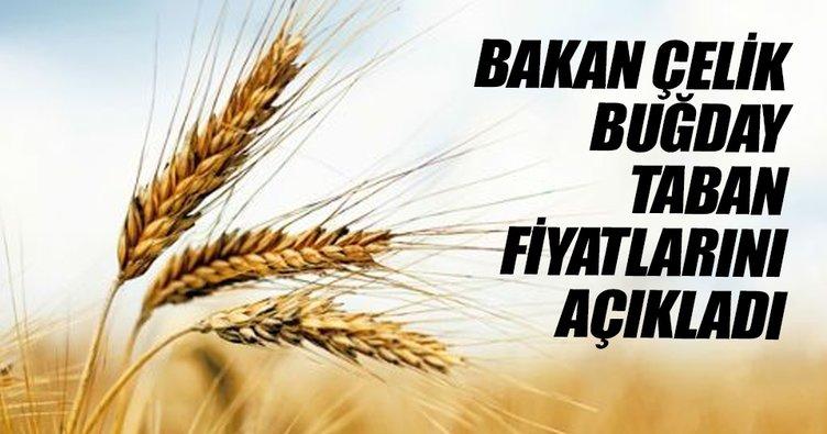 Bakan Çelik buğday taban fiyatlarını açıkladı