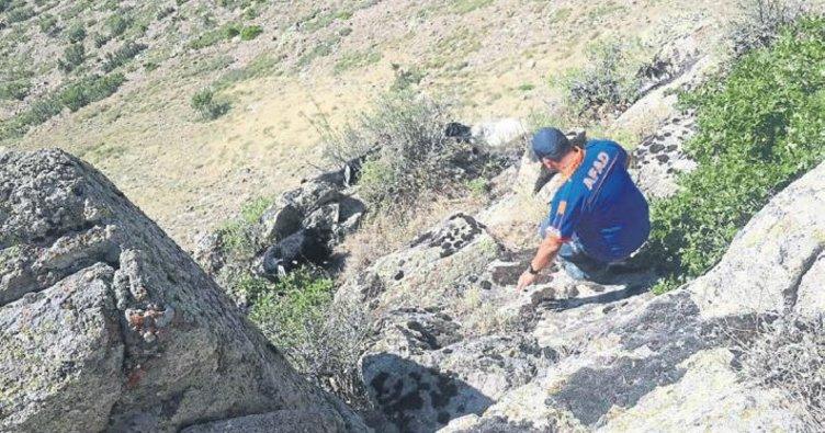 AFAD ekipleri keçileri kurtardı
