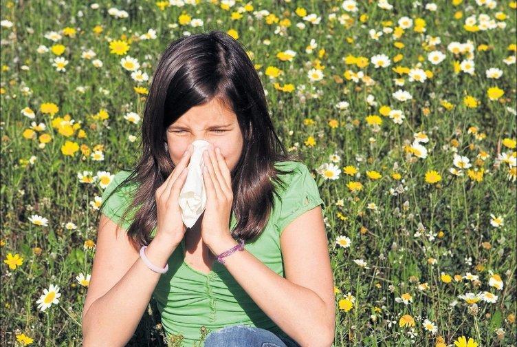 Polenler alerjik sinüziti tetikliyor!