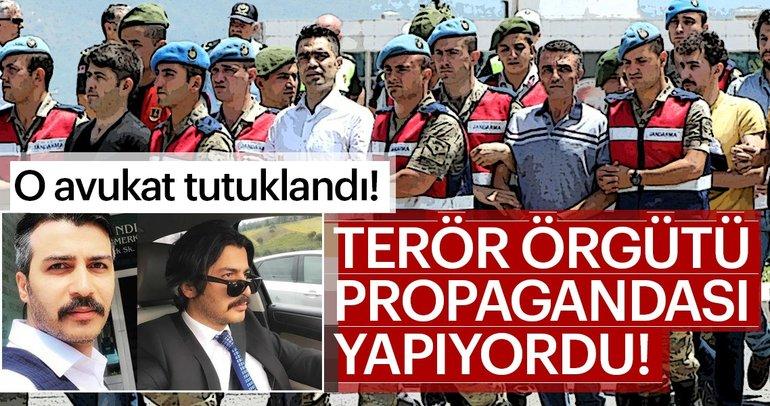 Terör örgütü propagandası yapan avukata şok