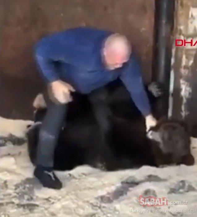 Rus dövüşçü, ayıyla antrenman yaptı