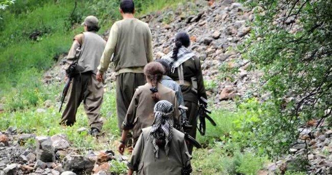 JÖH ile PÖH'lerden teröristlere ağır darbe