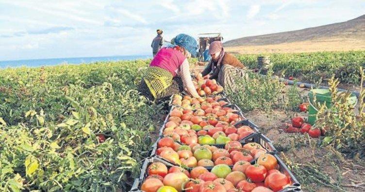 Antalya'nın yeni tarım kardeşleri