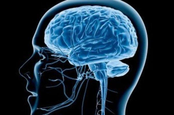 Beyne ilaç veren beyin implantı geliştirildi