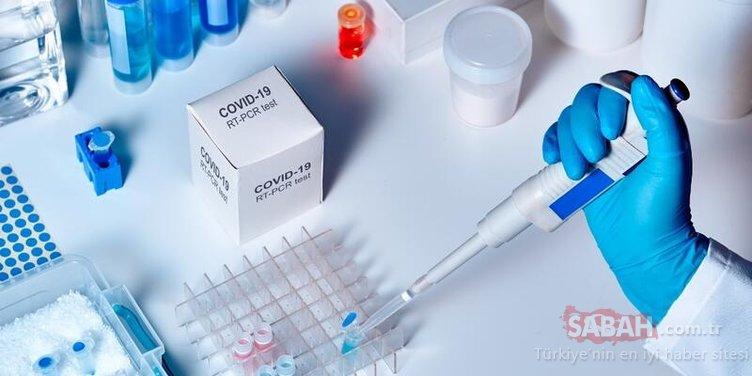 Son dakika! Heyecanlandıran açıklama geldi! Ekim ayına corona aşısı tamam!