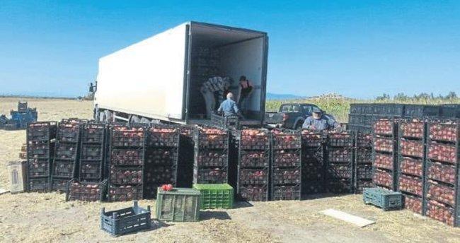 İzmirli aile Suriye'ye 42 ton nar gönderdi